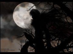 Raven_Lord_BG.jpg