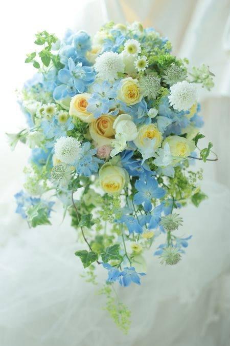 Splendoarea florilor.jpg