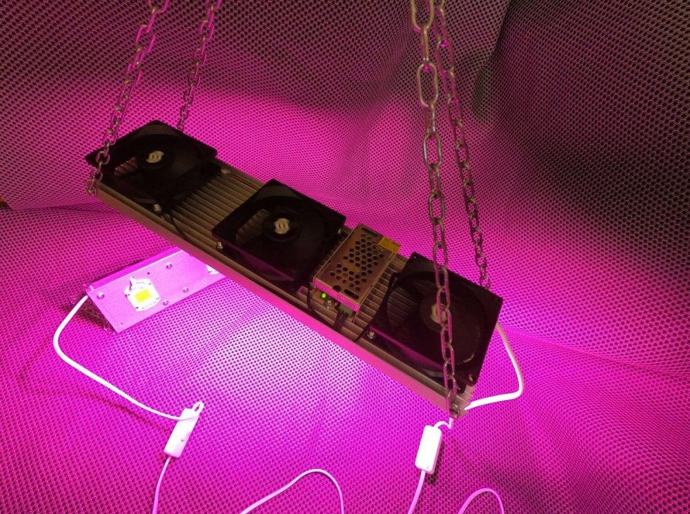 modul 150w led full spectrum2.jpg