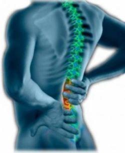 bolile coloanei vertebrale