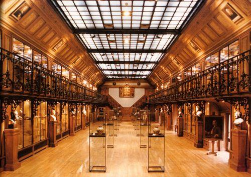 Muzeul de istorie de la Universitatea de Medicina din Paris