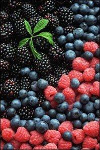 fructele de padure - sursa de bioflavonoide