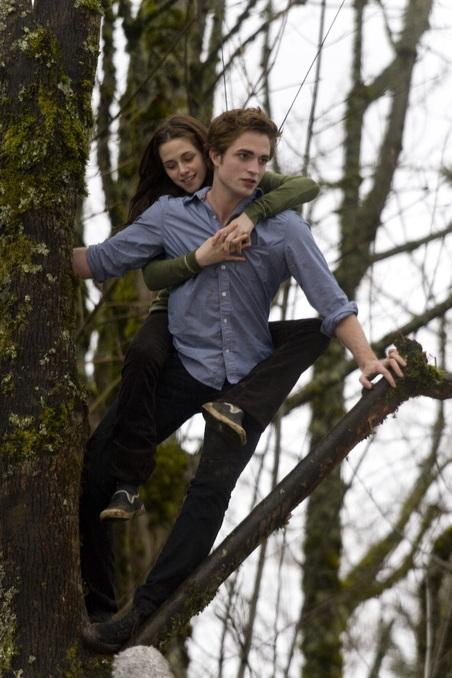 Bella si Eduard in Twilight