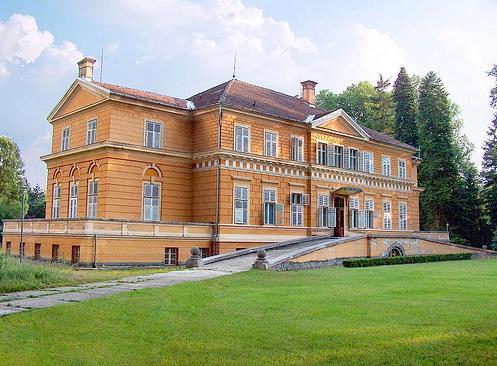 Castelul de la Savarsin