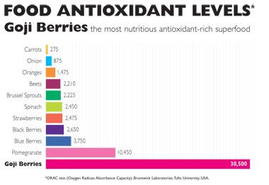 Goji si nivelul de antioxidanti