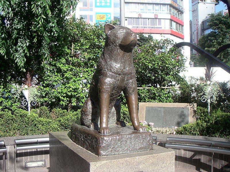 Statuia lui Hachiko din Japonia