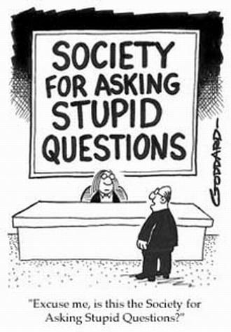 intrebari stupide