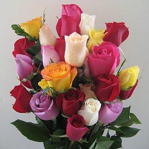 simbolurile trandafirilor