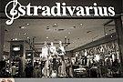 Haine en gros Zara, Stradivarius, Mango, Pimkie