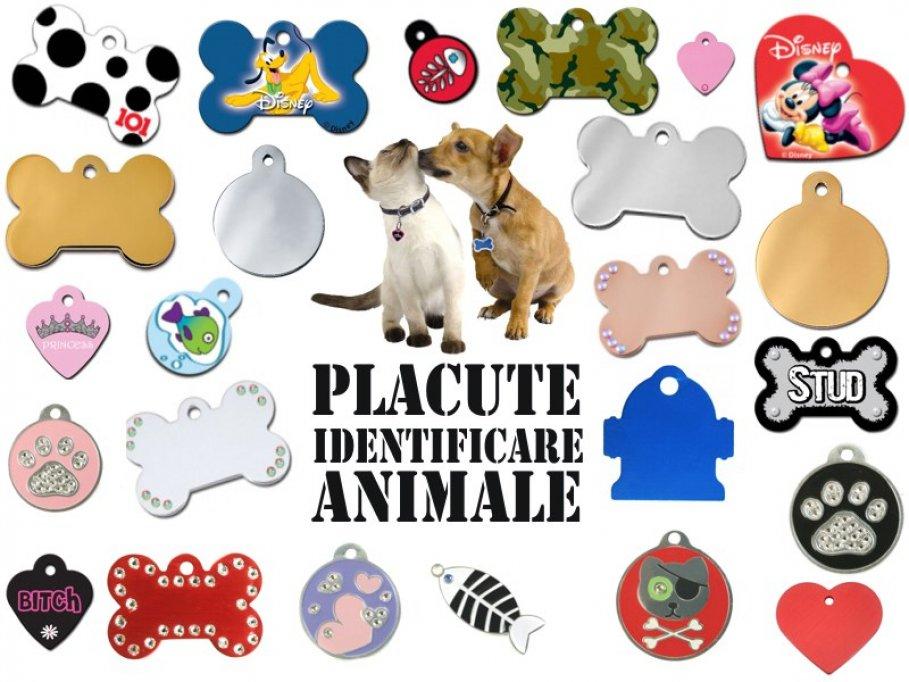 Medalioane personalizate pentru animale