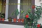 Termopane Rehau cu profil de 5 camere