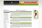 Dictionar Online