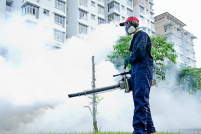PestControl Bucuresti