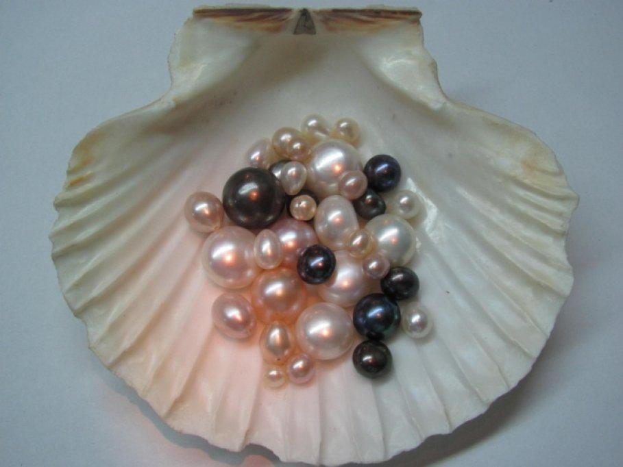 Cum  ajung  perlele ,,perle,,