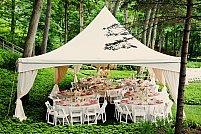 Cum sa organizezi o petrecere cu stil in natura?