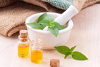 Plantele aromatice, aliatii in profilaxia si terapia afectiunilor