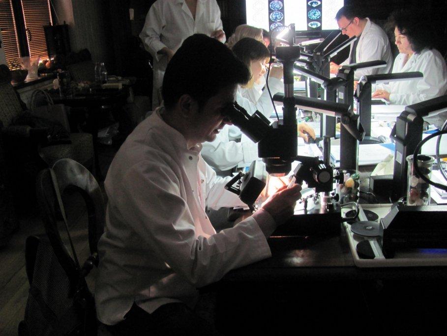 Cum ajungi specialist gemolog în diamante și pietre prețioase acreditat în România?