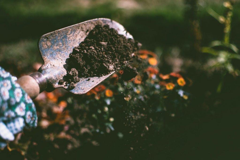 Care sunt cele mai folosite unelte de grădină
