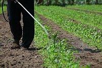 Produsele fitosanitare sunt utile, daca se vor aplica corect