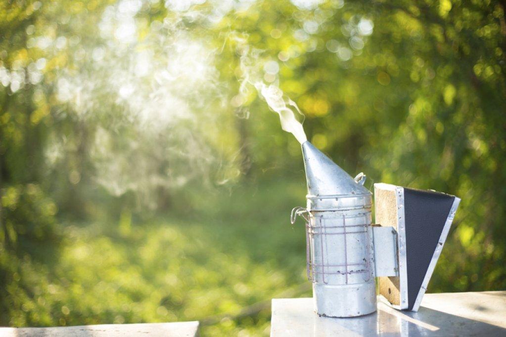 3 lucruri care nu trebuie sa iti lipseasca  in activitatea de apicultor