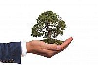 De ce Ambalajele Compostabile sunt cea mai Eco-Friendly soluție