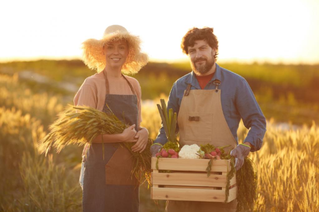 Culturi agricole profitabile in 2021 - Cum poti general cel mai mare profit