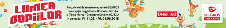 Selgros - jucarii