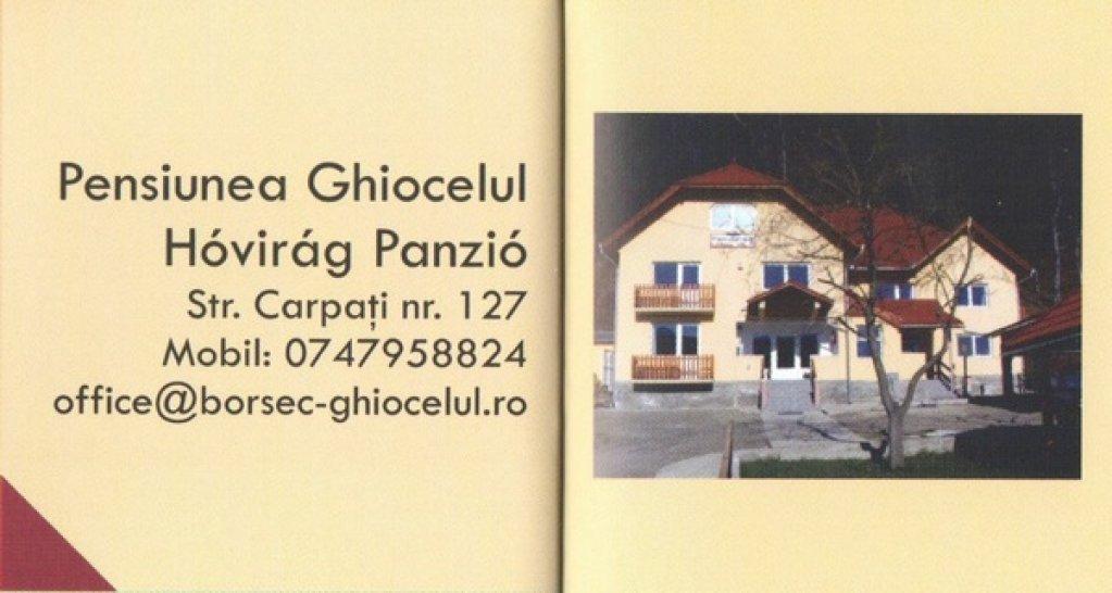 Pensiunea Ghiocelul